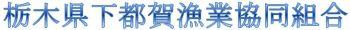 栃木県下都賀漁業協同組合(思川・黒川・姿川・永野川・渡良瀬)